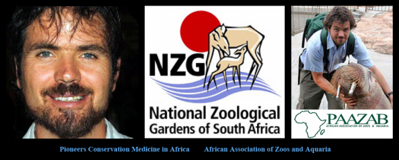 Pioneers Conservation Medicine in Africa-African Association of Zoos and Aquaria.png